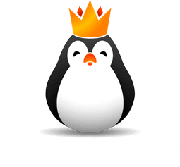The official Kinguin logo.